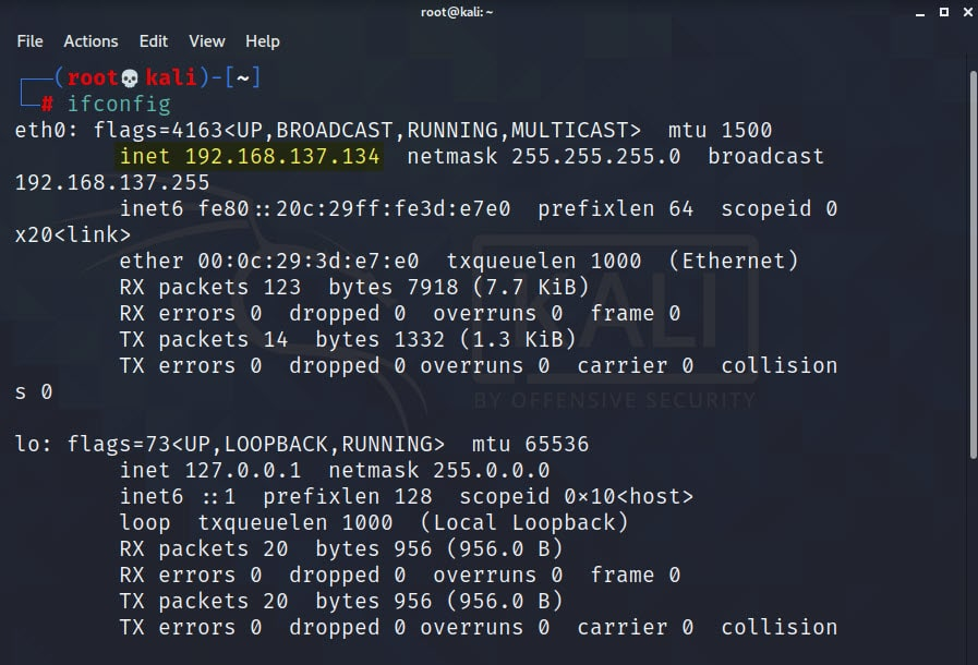 Share Files Between Kali Linux and Windows 10