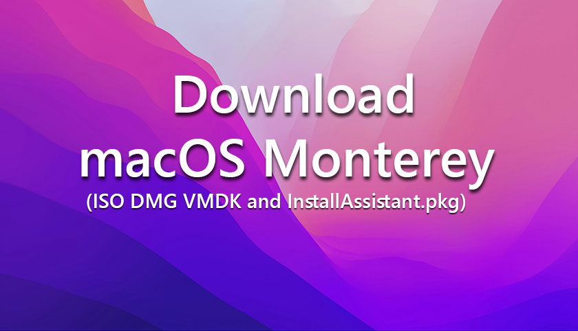Download macOS Monterey ISO DMG VMDK and InstallAssistant.pkg